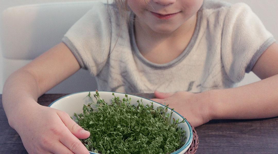 Gärtnern mit Kindern mit Gratis eBook